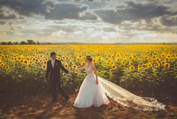newly-wed couple at a sunflower farm during sunset